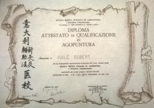 Diploma Acupuncture